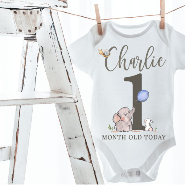 Baby boy vest-Charlie