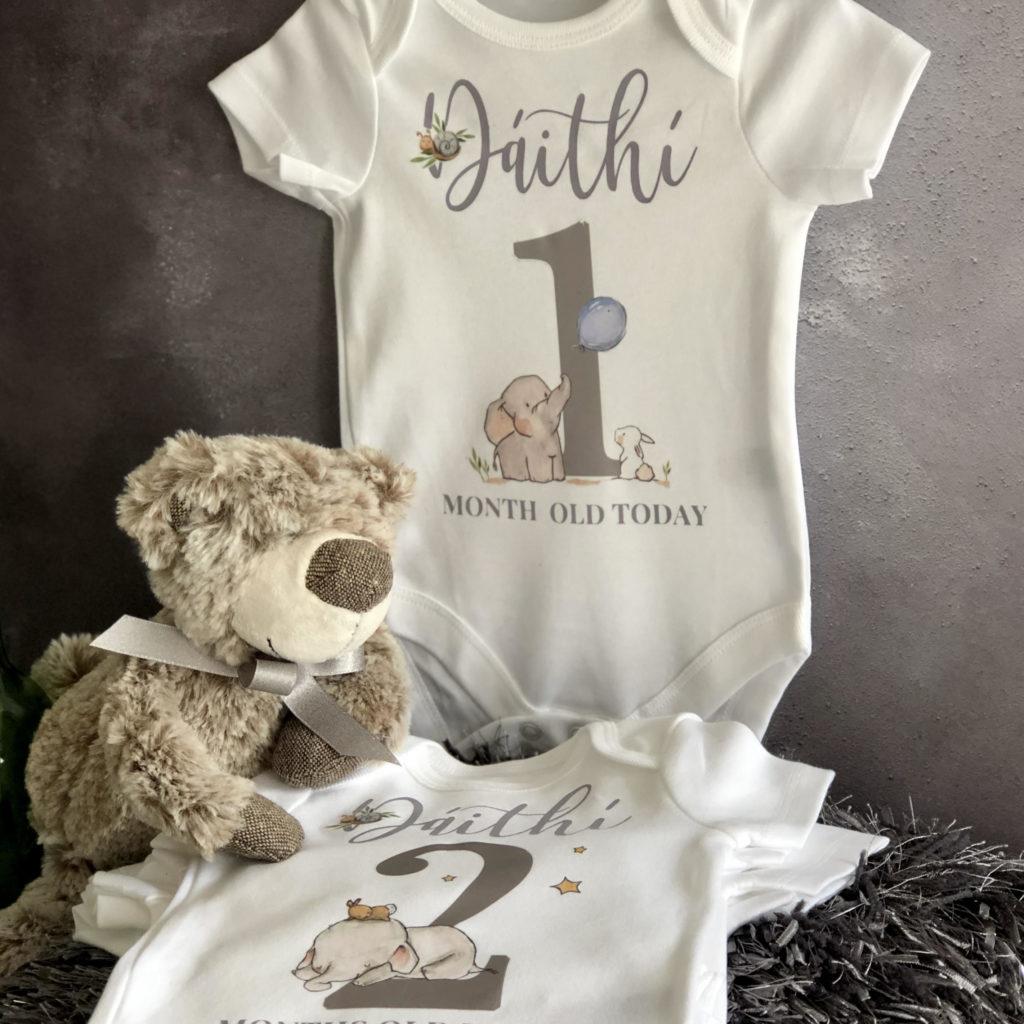 Baby boy milestone vests 1